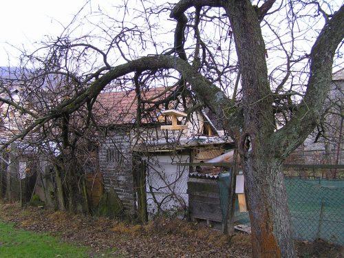 krmítko na strome